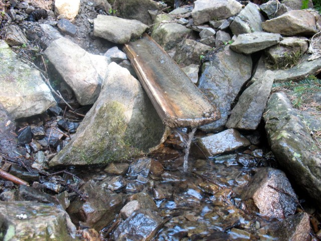 Джерело зі смачною водою недалеко від полонини