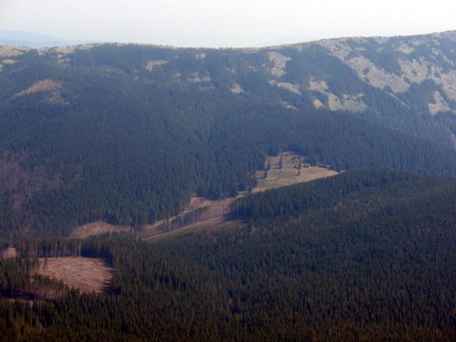 Полонина Верхня Зелениця (Фарфаненка) - між Синяком та Явірником
