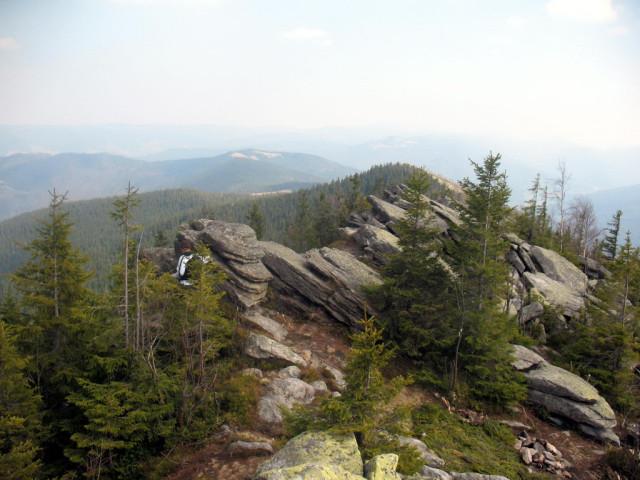 Вершина, гора Явірник-Горган (1467м)