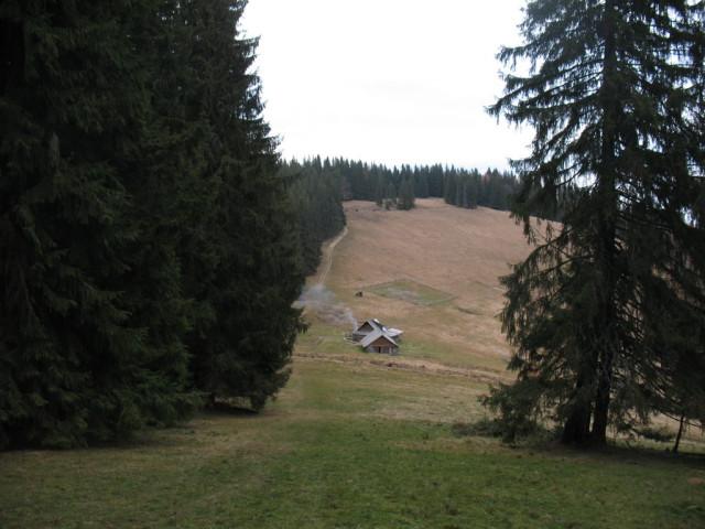 Нарешті - знайома полонина Буковинка. До Вороненки - ще біля 4-5 км