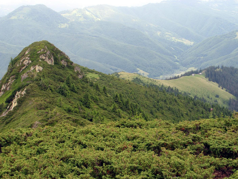 А стежка, якою ми помилково пішли, йде до цієї полонини на Румунській стороні