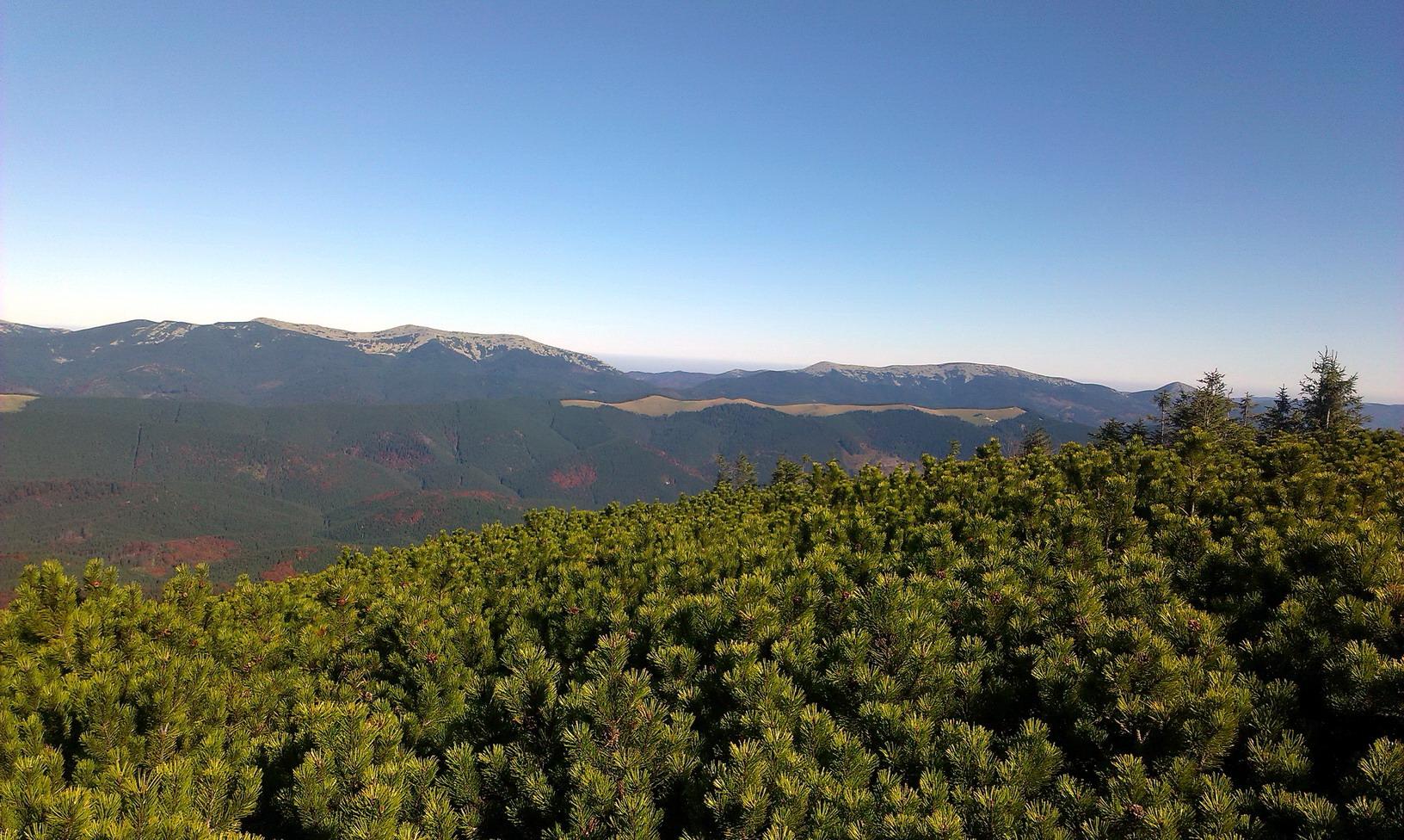 Справа - Горганські вершини. Масив Довбушанки, Синяк, Хом'як. А на передньому плані - Довга і Панорама-бар на ній