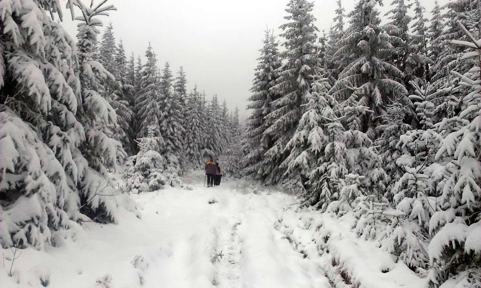 Зимова казка - така ж, як і в попередні роки