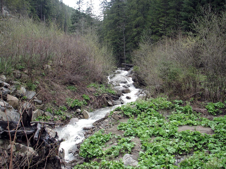 Йдемо вздовж потоку Жовнірський. На кожному кроці такі водоспадики