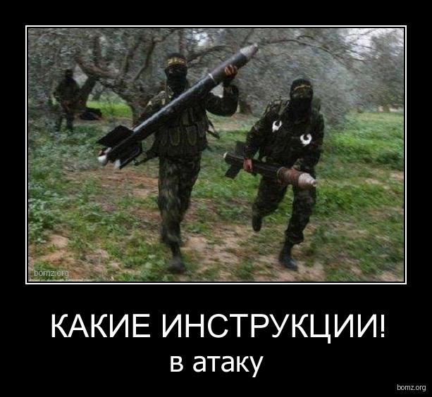 335565-2012.03.03-07.49.18-bomz.org-demotivator_kakie_instrukcii_v_ataku