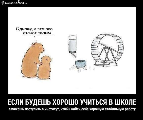 http://ic.pics.livejournal.com/zvezdadrakonov/65678502/23451/23451_600.jpg