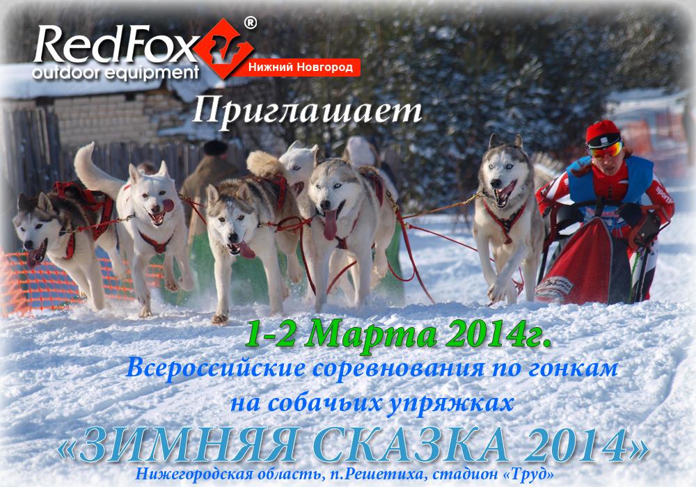 Зимняя сказка 2014 (афиша)